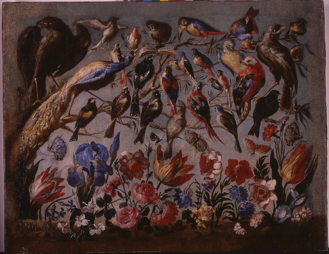 concierto de aves de Arellano
